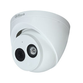 2MP IP Eyeball camera